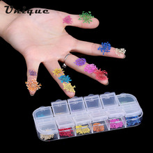 Nail Art Decoration 12 Colors Real Nail Dried Flowers DIY Tips with Case Small Flowers styling Tools