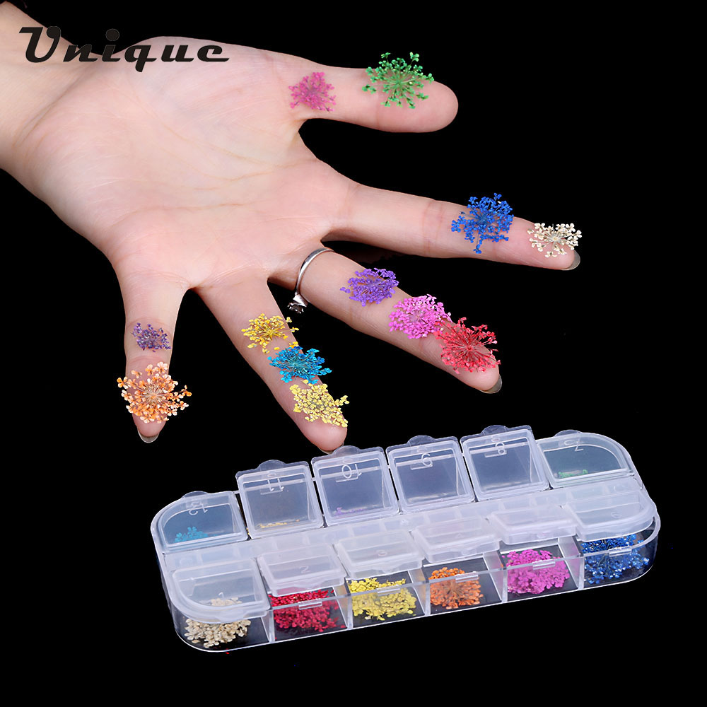 Aliexpress.com : Buy Nail Art Decoration 12 Colors Real Nail Dried ...