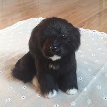 Dzieci pluszowe zwierzaki zabawki realistyczne czarne Mini psy lalki realistyczne zwierzęta domowe modele dzieci poznawcze zabawki kreatywny prezent