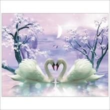 Алмазная живопись 5D «сделай сам» Лебединая Любовь полный квадратный алмаз вышивка плакат, Декор для дома T030