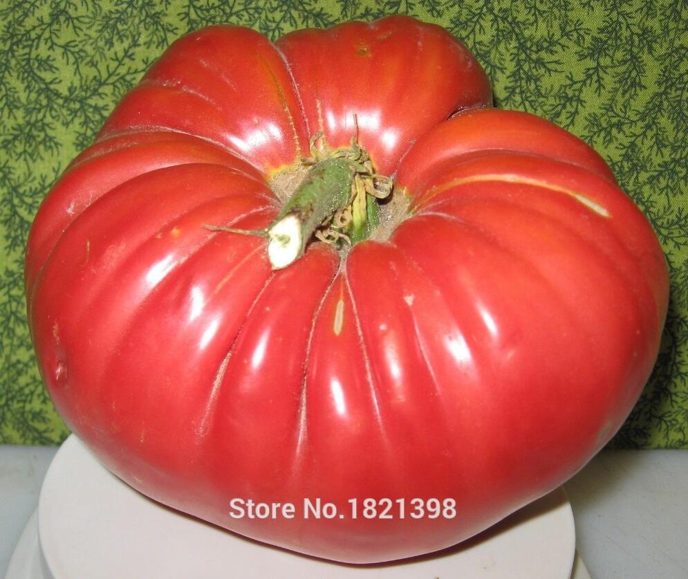 100 - Greek tomatoes seeds heirloom sweet gardening seeds plants non gmo vegetable seeds for home garden planting