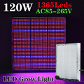 1pcs/lot 120W AC85~265V Red/Blue High Power LED Grow Light For Flowering Plant and Hydroponics System LED Aquarium lamps