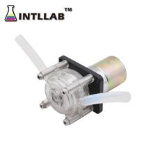 INTLLAB DIY Schlauchpumpe Dosierung Pumpe 12V / 24V DC, Hohe Strömungsgeschwindigkeit für Aquarium Lab Analytische