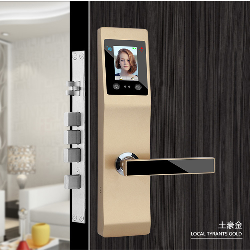 Keyless Smart Lock intelligent Palmprint Face Facial Recognition Door Lock for home office lock security access