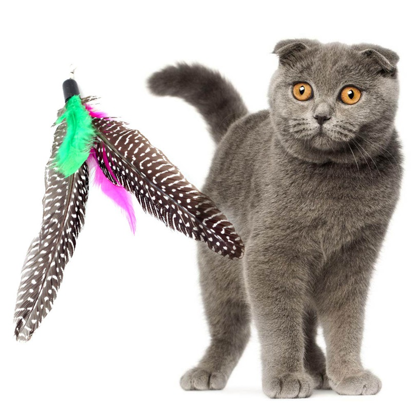1 Pcs Home Drop Shipping Pet Cat Toys Newly Design Funny Cat Chew Toys Pet Refill For Bird Feather Wand Refill