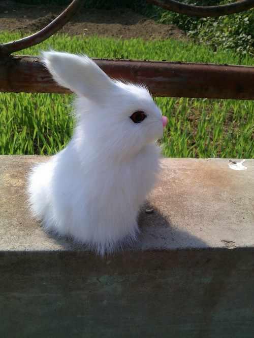 14x10 см, кролик Твердые игрушечные модели, полиэтилен и меха Белый сидящий кролик ремесло, реквизит, украшение дома, Рождественский подарок 0640