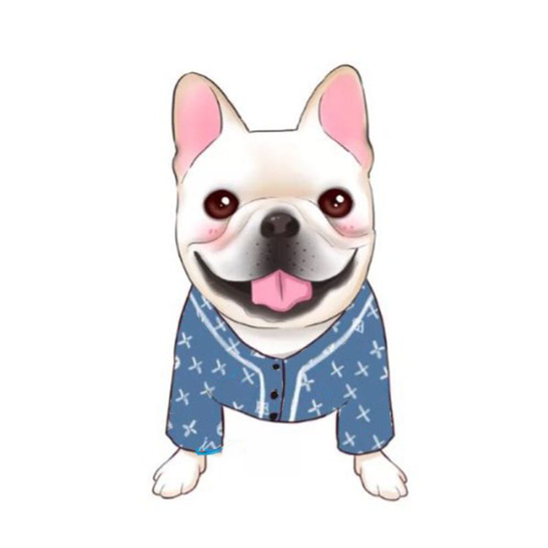 Dog Clothes For Small Dogs Soft Shirt Clothing For Chihuahua Yorkshire Clothes Tide Brand Pajamas For Pet Dropshipping PC0631