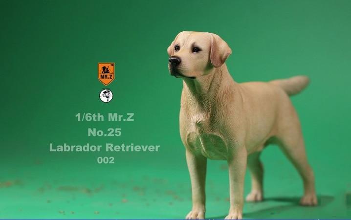 1//6 MR.Z Golden Retriever Model 002 Simulation Dog Mini Animal F action Figure