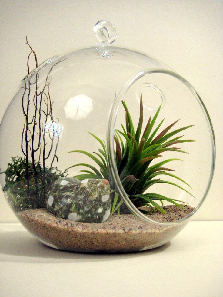 3pcs Set Blown Glass Hanging Terrarium Kits Airplant Orb Terrariums