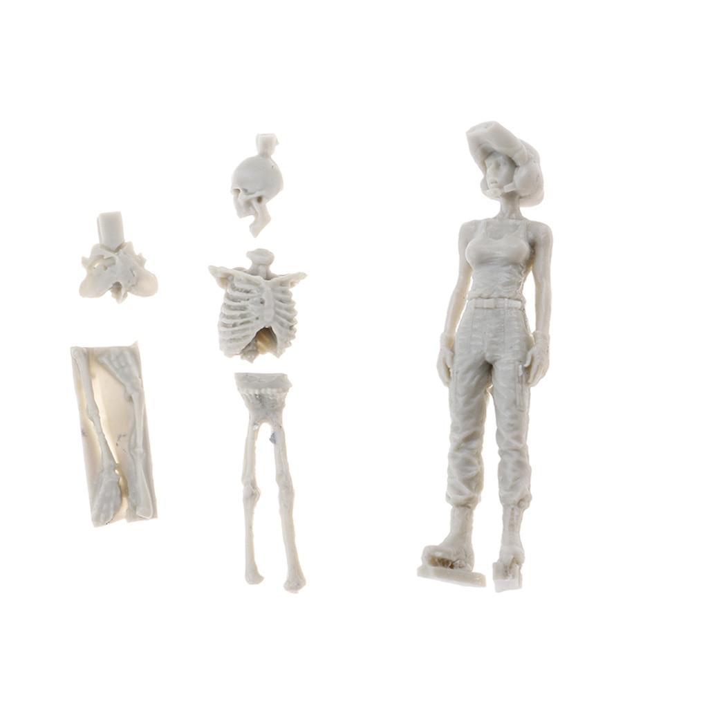 Craft Action-Figure-Model Skeleton Female Model-Building-Kit Skull Unpainted Unassemble-Art