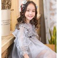 Baby Girls Summer Spring Long Sleeved Dress New Korean Style Children Girls Princess Lace Dress Perspective