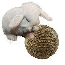 Жевательно-кусательная игрушка для чистки зубов домашних животных, мяч для игры в траву, Игрушки для маленьких животных, кроликов, хомяков, морских кроликов, товар для домашнего животного