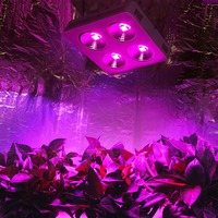 Newest COB Full Spectrum Led Grow Light 800w DIY High Power for indoor Hydroponic Grow Box for Medical plant grow tent