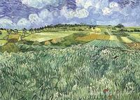 Nghệ thuật bức tranh sơn Dầu Đồng Bằng gần Auvers Vincent Van Gogh sinh sản Handmade chất lượng Cao
