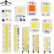 Real Power LED COB Chip 10W 20W 30W 50W LED Lamp Bulb 220V Input IP65 Smart IC For DIY Outdoor LED Flood Light chips Spotlight