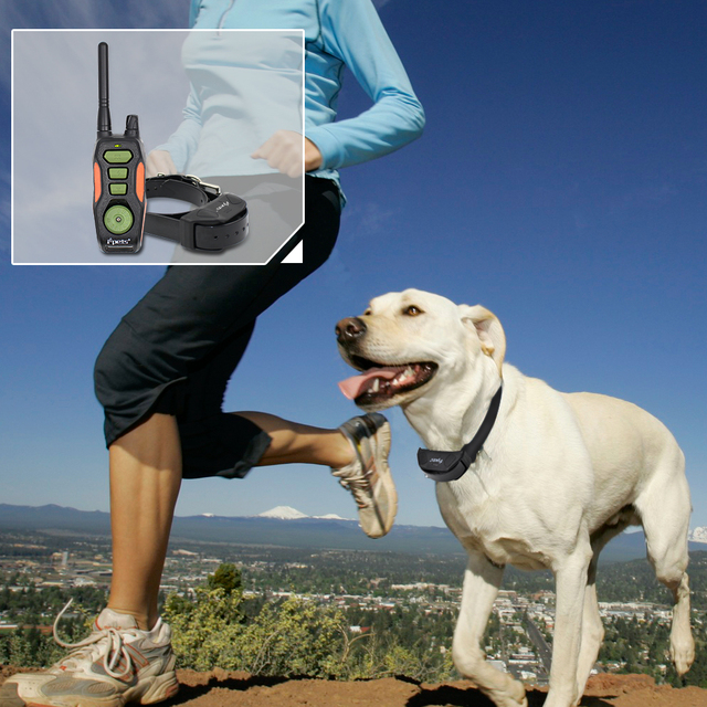 Electric Waterproof and Rechargeable Dog Training Collar and Remote Transmitter
