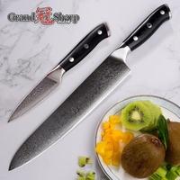 Damascus Knife Sets 2 Piece Chef Butcher Paring Kitchen Knives Japanese Damascus Steel vg10 Cooking Tools Damascus Knives Sets