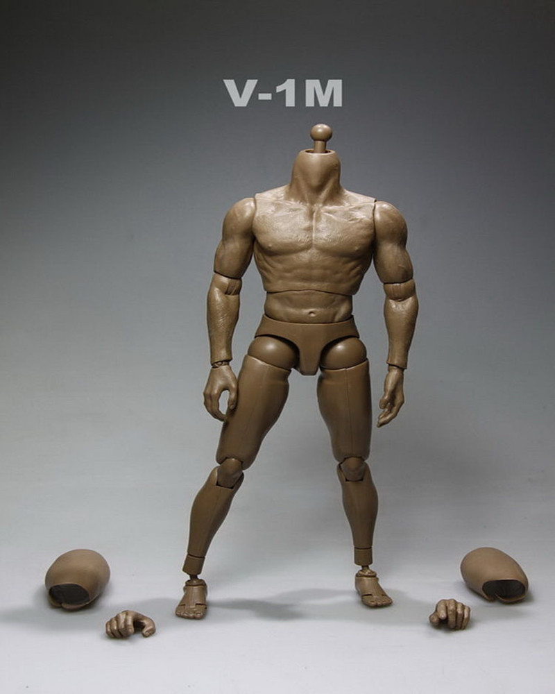 ФОТО 1/6 Scale Nude Muscular Male Body  Action Figure Hot Toys V1-M Without Head Sculpt