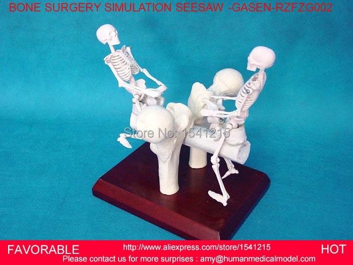 Modèle médical de squelette d'anatomie anatomique humaine, modèle de squelette humain aide à l'enseignement MINI squelette, squelette ART GASEN-RZFZG002