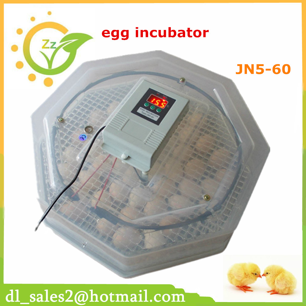 best price incubator holding 60 eggs energy saving and multifunction mini egg incubator for home use best price 5pin cable for outdoor printer