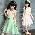 2016 новое поступление девочек платье принцессы платье детей ну вечеринку завеса износ большой с бантом цветочница свадебное платье белая роза новорожденных девочек