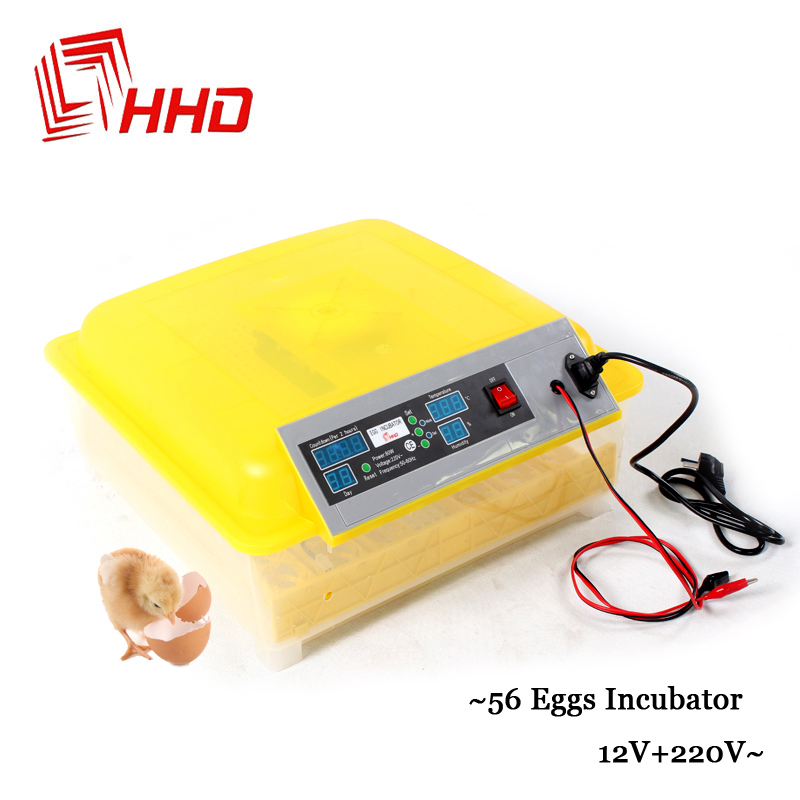 12V+220V 56 Eggs Brooder Mini Temperature And Humidity