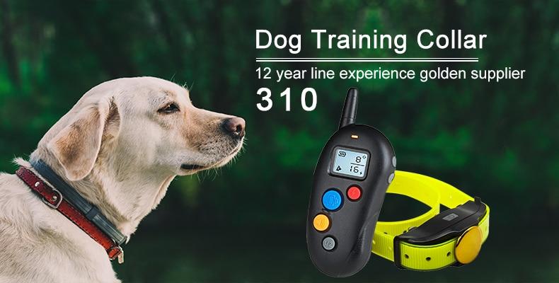dog anti bark shock collar