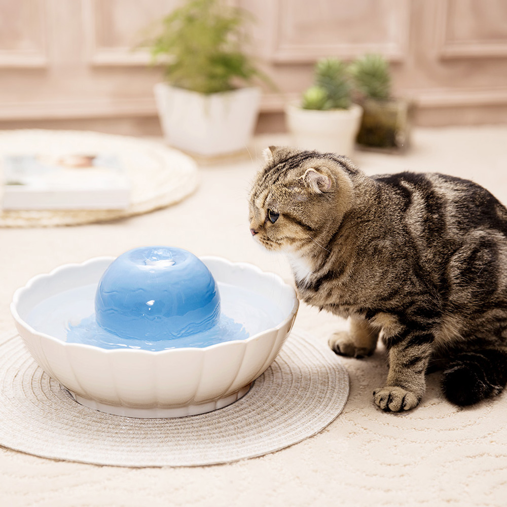 F Fnew 2 1l Automatic Electric Pet Water Fountain Dog Cat Water