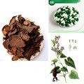 Fo-ti (Ho Shou Wu) 500 mg 100 Cápsulas 5: 1 Extracto de Anti-Envejecimiento Sexual salud