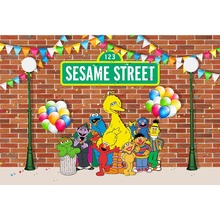 sesame street Birthday party Children cartoon Baby Photography Backgrounds Customized Photographic Backdrops For Photo Studio