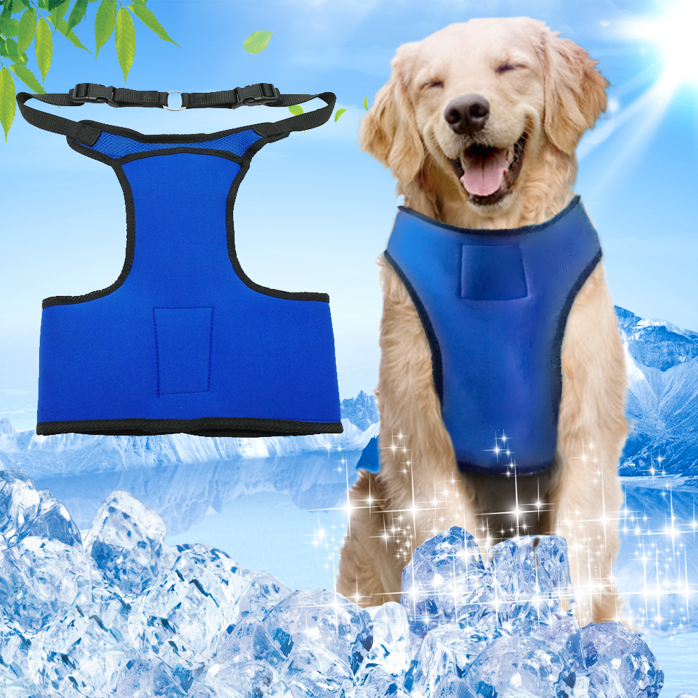Summer Cooling Dog Harness Mesh Padded Vest For Large Dogs With 3 Pack Of Frozen Gel Blue ColorSummer Cooling Dog Harness Mesh Padded Vest For Large Dogs With 3 Pack Of Frozen Gel Blue Color