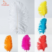 ChengBright 10 Pcs 55 60CM/22 24inch Big Ostrich Feathers for DIY Jewelry Craft Making Wedding Accessories Decoration Feathers