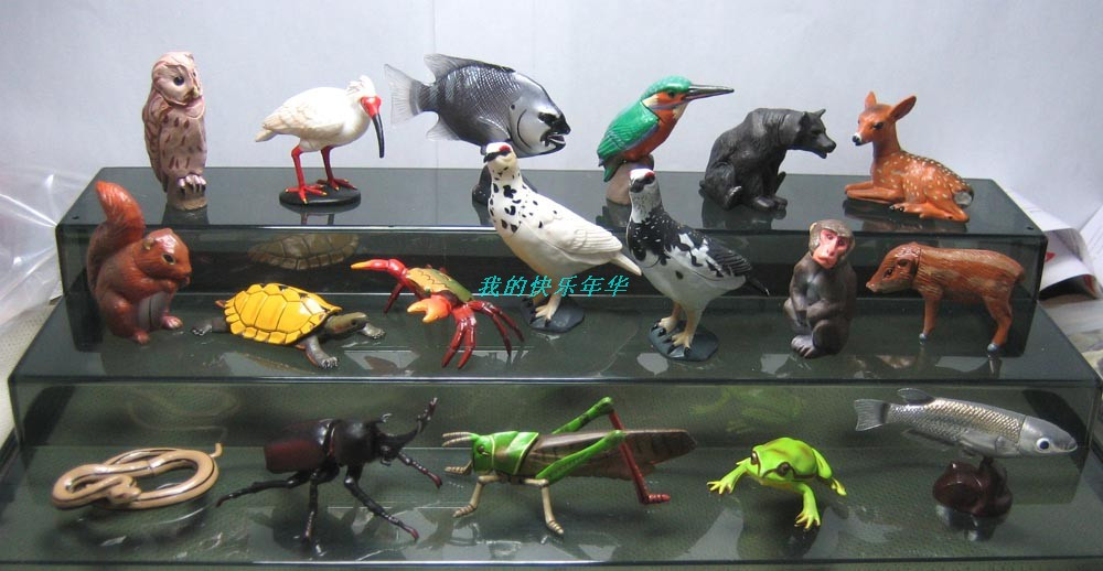 Simulation animal model   capsule  toys  children toy cognitive Decoration  pvc figure  infrared remote control simulation brazil turtle toy animal model