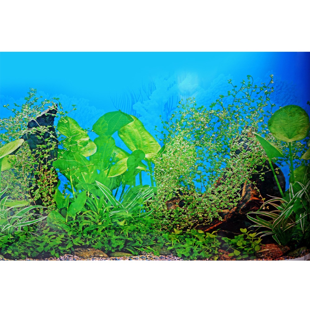 Creative aquarium background poster fish tank beautiful for Oceanic fish tanks