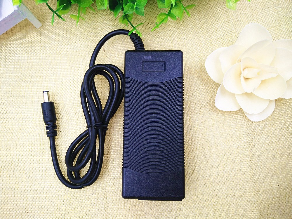 12V 3A Battery Charger (7)