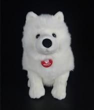 28 cm Levensechte Samojeed Knuffels Leuke Simulatie Witte Hond Knuffel Puppy Pluche Dieren Speelgoed Verjaardag Kerstcadeaus