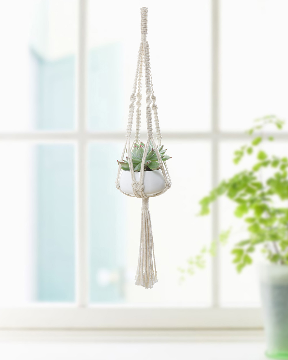 Mini Hanging Macrame Plant Hanger Planter Holder With