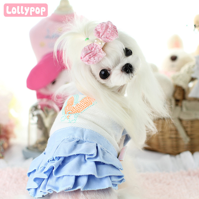 משהו רציני ממתקי רקמת תחרה בגדי צ 'יוואווה כלב מטושטשת צווארון שמלות פרחוני ZA-08