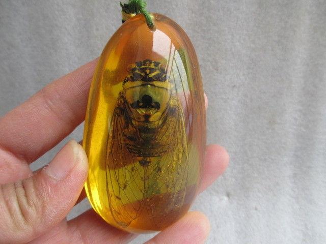 79 Cm Rumit Cina Buatan Amber Resin Jangkrik Kalung Liontin Di Patung Miniatur Dari Rumah Taman AliExpress