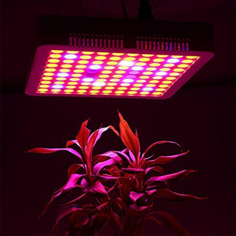 LED Grow Light 1500W Timer Lamp For Plants 100 Leds Phyto Lamp Full Spectrum Led Fitolampy Lights For Flowers Grow Tent Box Room
