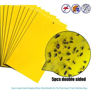 20/10/5pcs Strong Flies Traps Bugs Sticky Board Catching Aphid Insects Pest Killer Outdoor Fly Trap for Aphids Fungus GnatsLeaf(China)