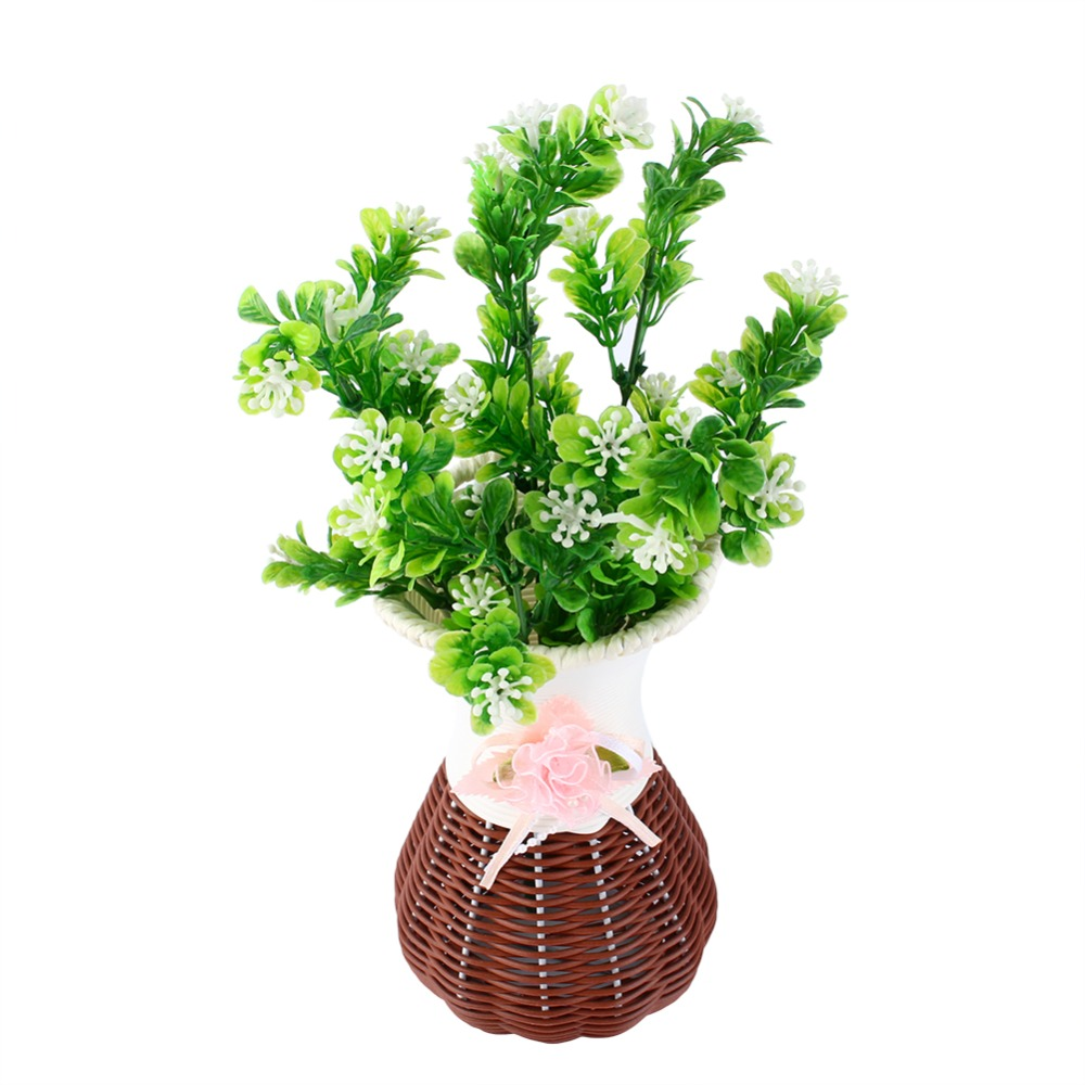 online get cheap eucalyptus plants -aliexpress   alibaba group