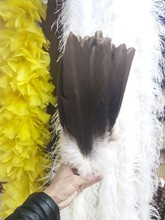 Wholesale 10 pc 12-14inches / 30-35cm high quality natural  Eagle bird feathers