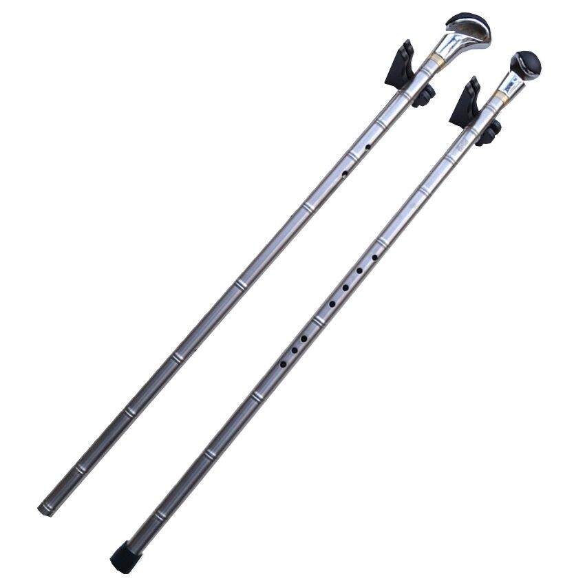 Métal Titane Flûte Xiao + Bâton de Marche G/F Clé Vertical Flûte Xiao Flauta Profissional Musique Instrument Auto- défense Arme