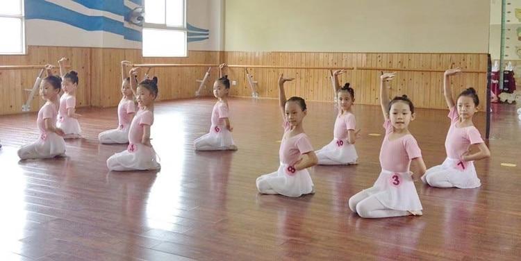 Classical Ballet Tutus (4)