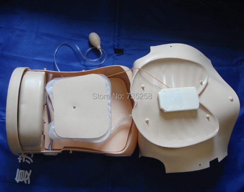 Advanced CPR təlim Manikin, büst CPR təlim - Məktəb və tədris ləvazimatları - Fotoqrafiya 4