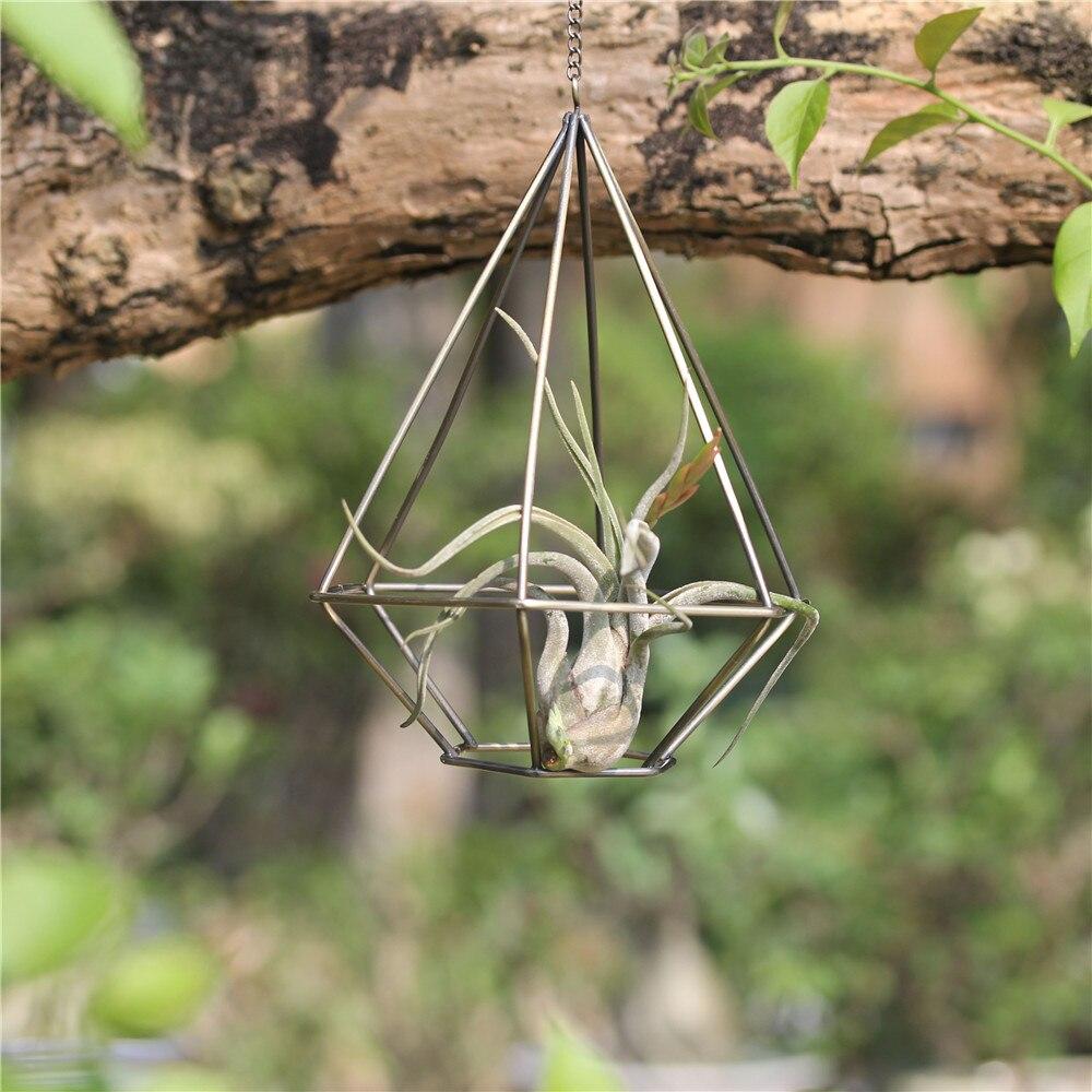 Rustic Hanging Metal Diamond Tillandsia Air Plant Rack Himmeli Geometric