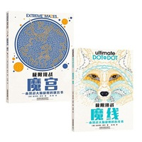 Extreme Brain Challenge Books For Adult Children Relieve Stress Antistress Memory Attention Potential development Coloring Book