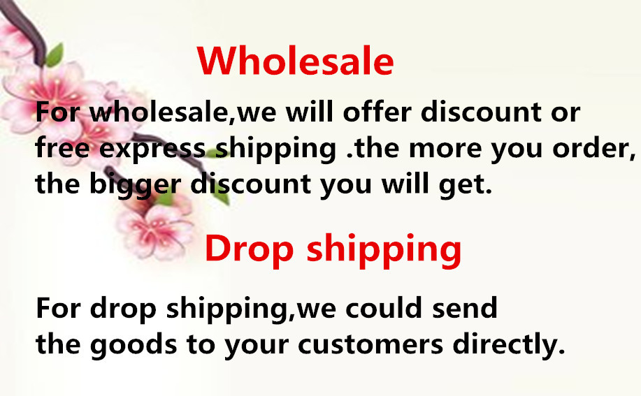 drop shipping sale3