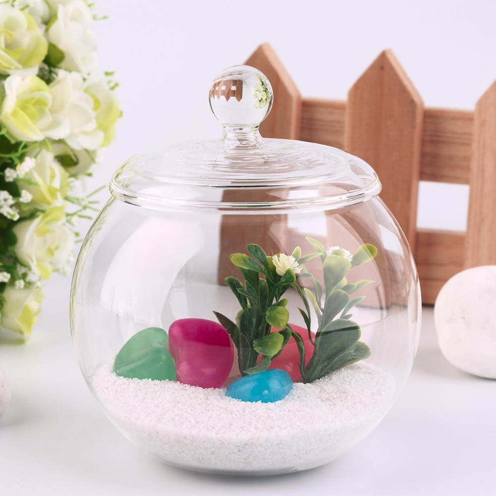 2018 1 set Diameter 10 cm Transparent Micro Meaty Bryophytes Landscape Glass Vase Bottle With Cover Home Wedding Decor Craft Gif